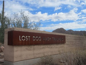 lost-dog-wash-trailhead
